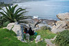 Whale Watchers, Hermanus