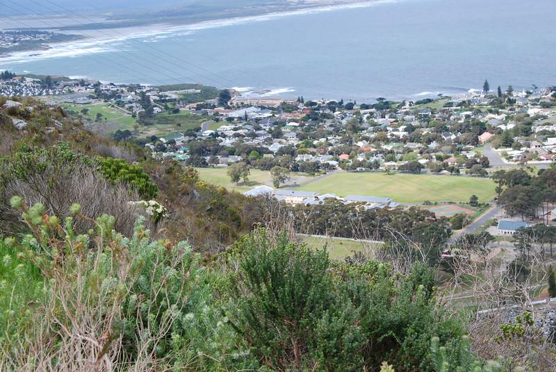 Telegraph Hill overlooking Hermanus