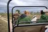 Open Jeep, Inyati Game Reserve