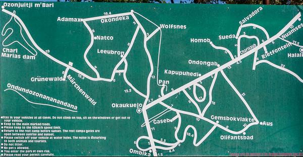 Roads of Etosha