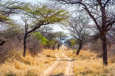 Kalahari, Waterberg