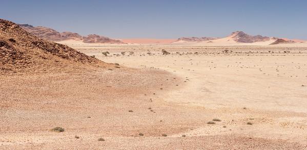 The Distant Dunes