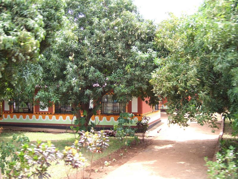 houses in Livingstone