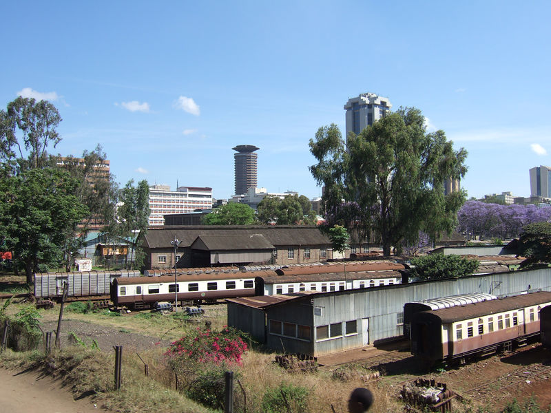 Downtown Nairobi in the distance, with the blooming jacaranda trees in the background.