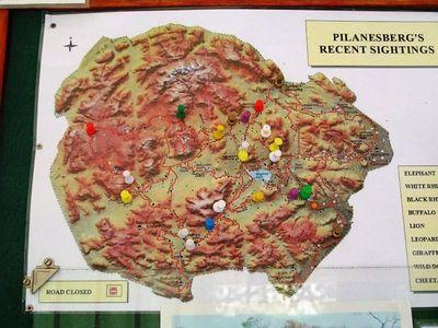 Pilanesberg 2005