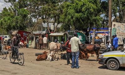Kenya Downtown