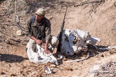 Ranger Zwa telling about elephant bones