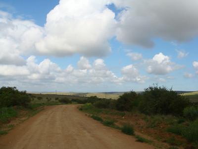 dirt_road_2