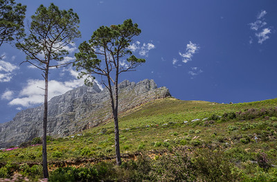 Cape Town, South Africa View of Table Mountain.