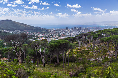 Cape Town, South Africa Cape Town view from the base of Table Mountain.