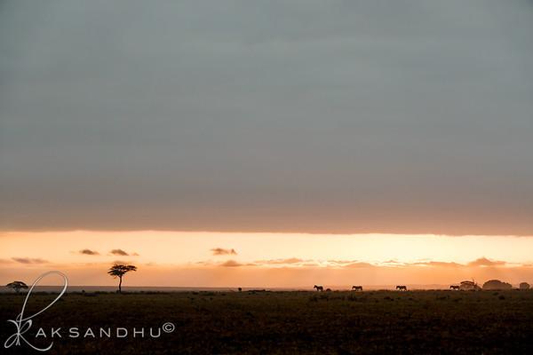 SunInAfrica-008
