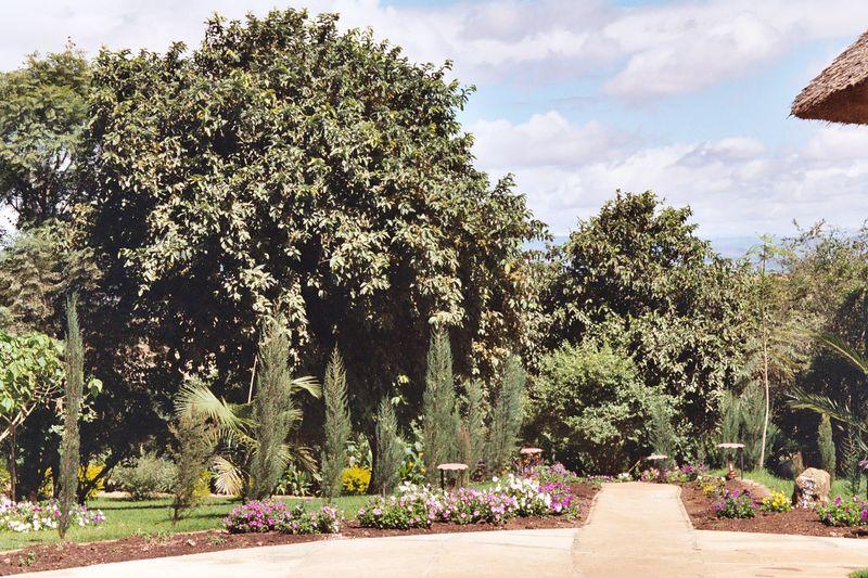 Ngorongoro Farmhouse Gardens