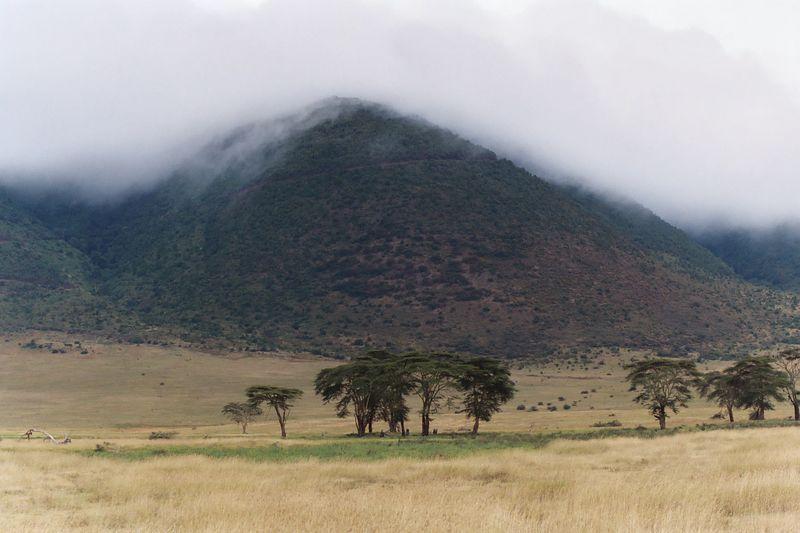 Ngorongoro Crater - Crater Scene