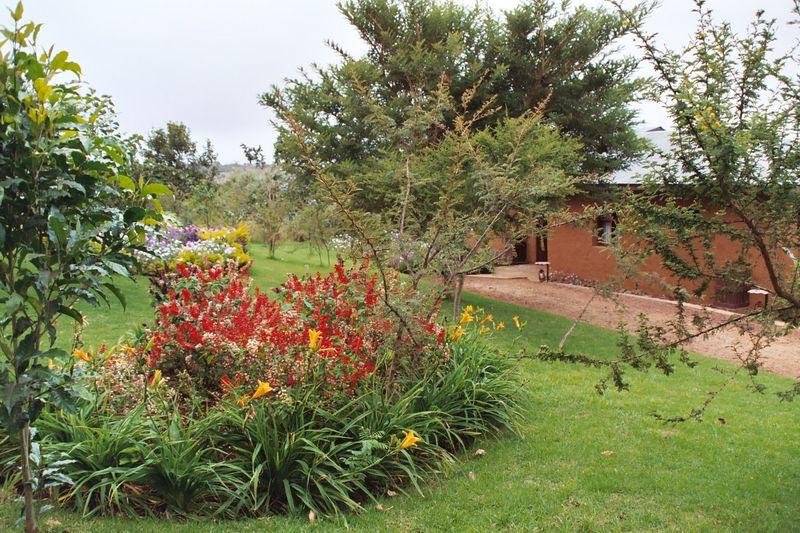 Ngorongoro Farmhouse, Gardens Next to Bungalows