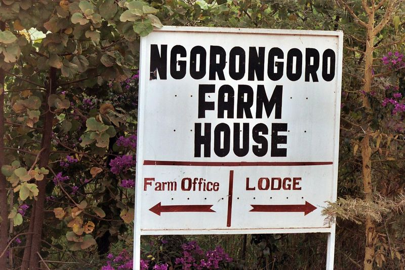 Next Stop, Ngorongoro Farmhouse, Near Karatu