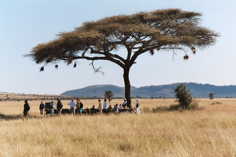 Serengeti NP - Breakfast in the Bush