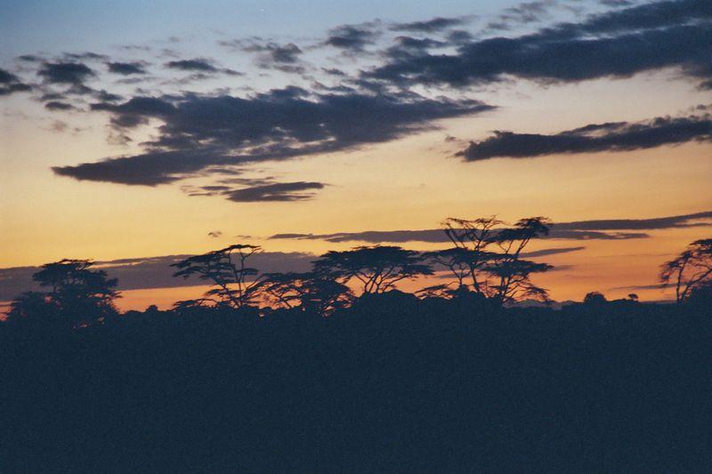 Serengeti NP - Before Dawn on the Serengeti
