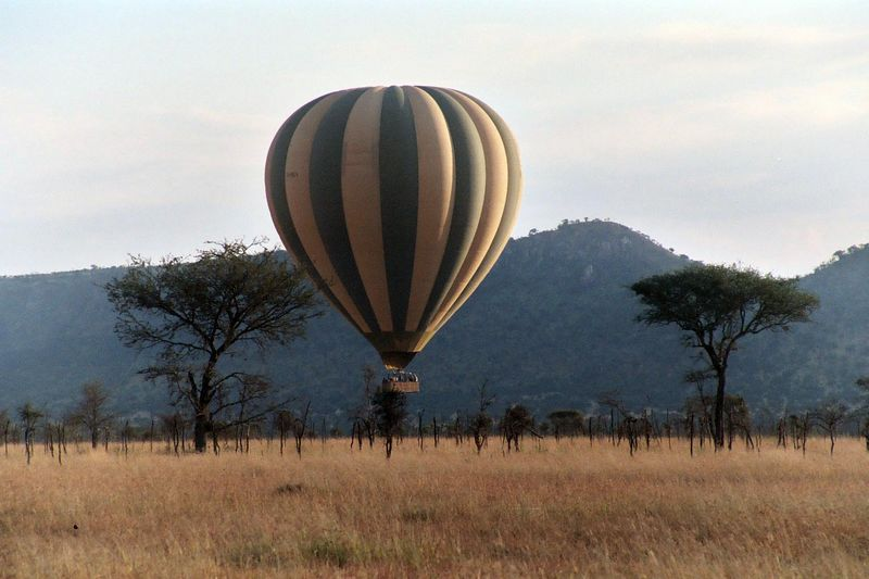 Serengeti NP - Coming In for a Landing