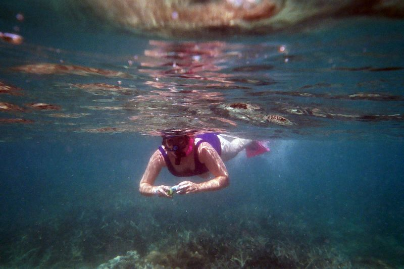 Prison Island Snorkeling