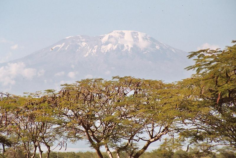 Kwaheri, Tanzania!