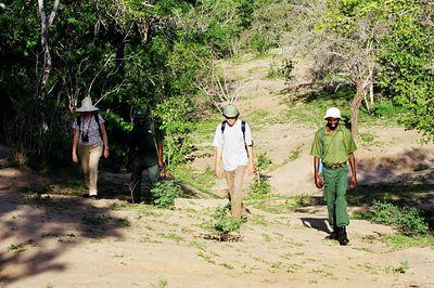 Walking safari Selous
