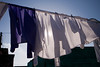 A full load of newly cleaned shirts are drying in the warm sun while hanging from a clothesline in a South African township.