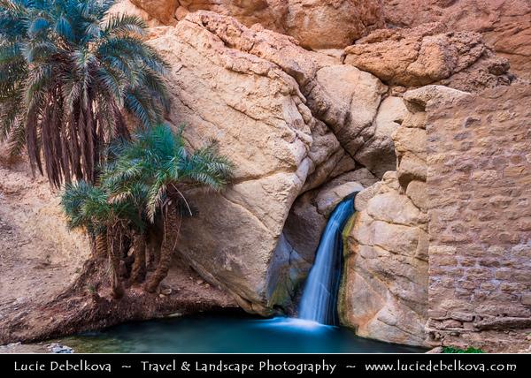 Northern Africa - Tunisia - The Sahara Desert - الصحراء الكبرى - Atlas Mountains - جبال الأطلس - Mountain range across a northern stretch of Africa - Tozeur Governorate - Tamerza Canyon - Mountain oasis with waterfalls