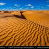Northern Africa - Tunisia - Jebil National Park - Sahara desert and its large sea of sand dunes