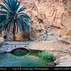 Northern Africa - Tunisia - The Sahara Desert - الصحراء الكبرى‎ - Atlas Mountains - جبال الأطلس‎ - Mountain range across a northern stretch of Africa - Tozeur Governorate - Tamerza Canyon - Mountain oasis with waterfalls
