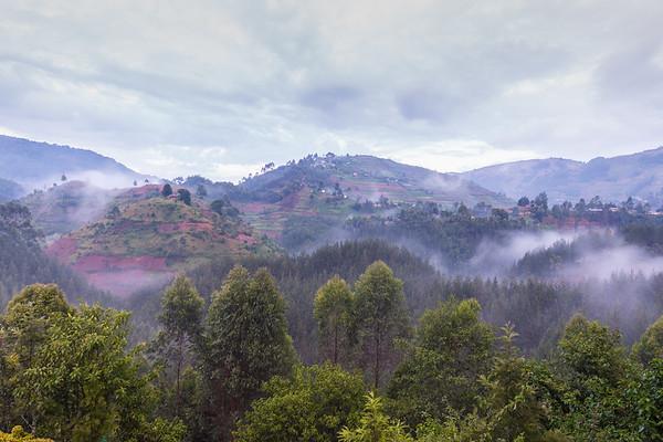 Bwindi - After the storm