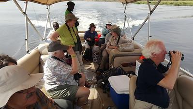 Boat Birding