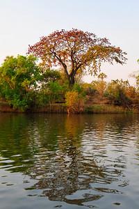 _D038810 Zambezi River