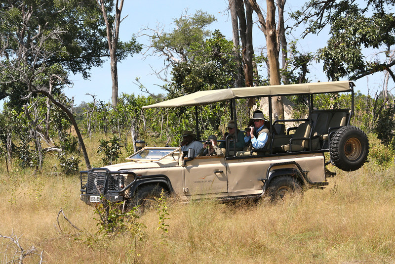 Others capturing the wild dogs…then, it was a wild ride thru the bush to get to the airstrip in time.