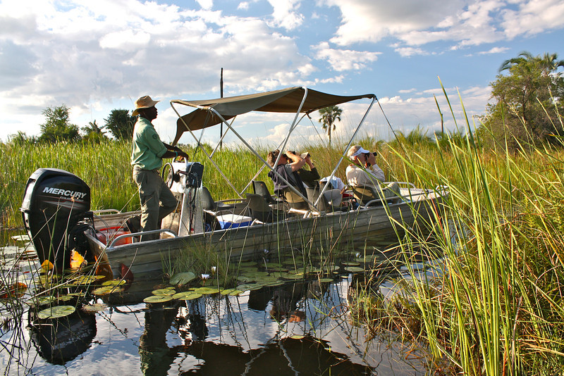Later, we go out for an afternoon game drive on a similar speed boat through the Okavango Delta.