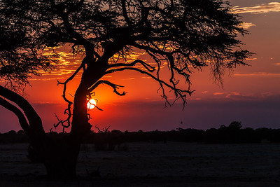 Hwange National Park, Zimbabwe Sunset at Hwange National Park