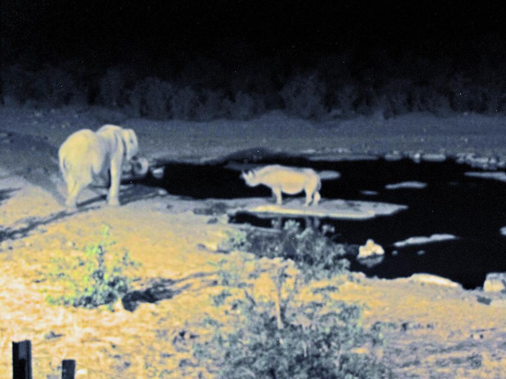Halali Waterhole, Etosha National Park