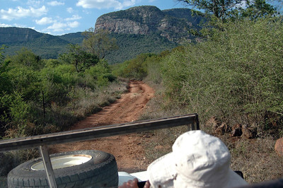 Soutpansberg Mountains, Limpopo Province, South Africa