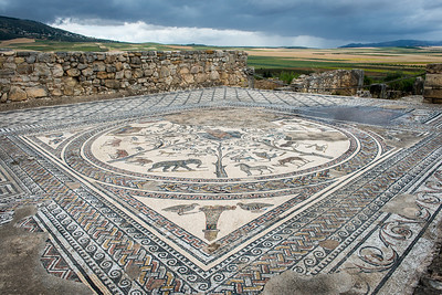 Mosaic - The ancient Roman City of Volubilis