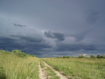 More gloomy skies, coming our way.