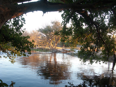 "View from our ""old Bridge"" backpackers lodge, Maun, Botswana"