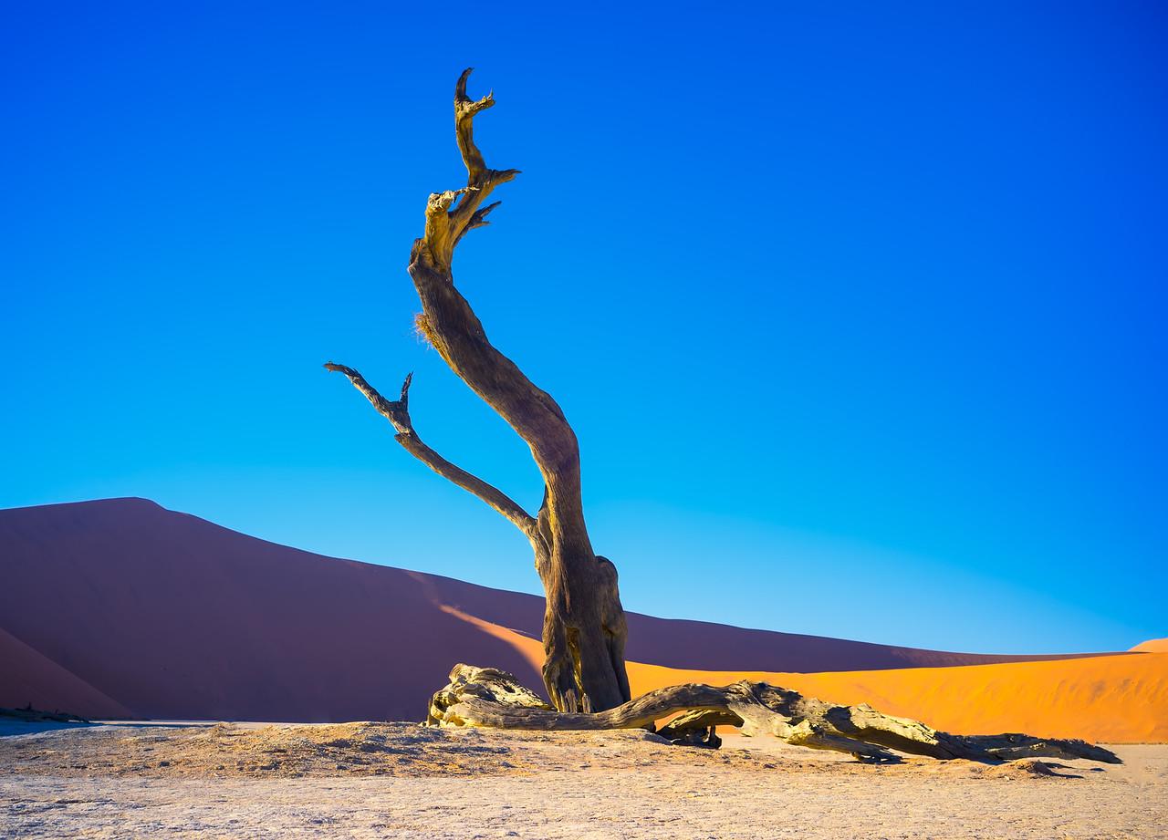 Awesome Desolation
