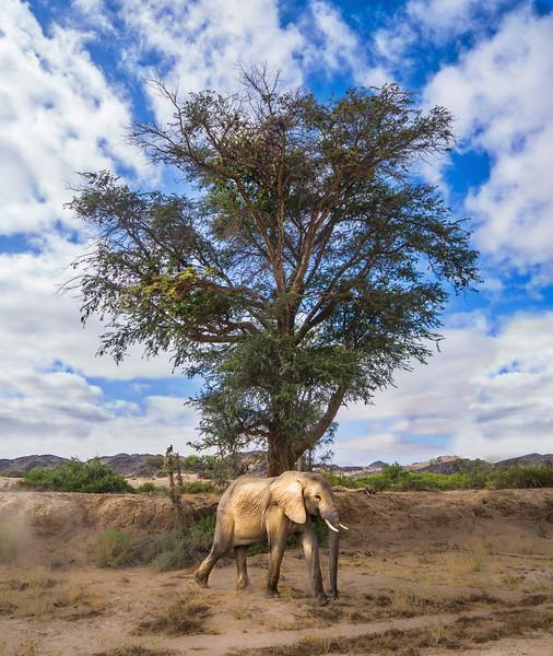 Photo b Trey Ratcliff