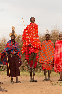 Masai warrior dancing and jumping, Kenya