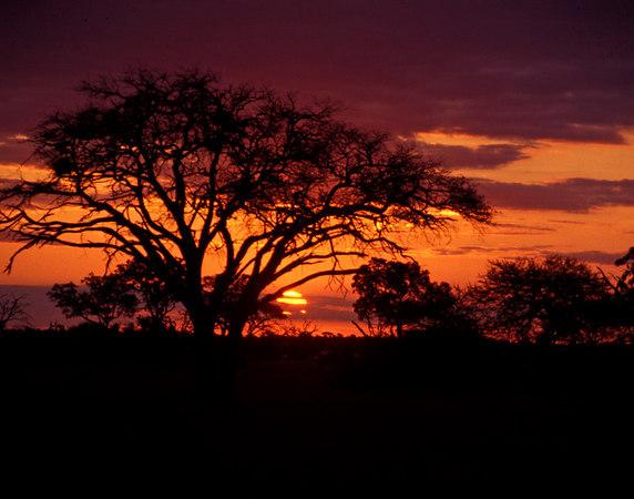 Sunset along the Zambzie River in Zimbabwae