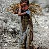 Bilin girl carrying firewood