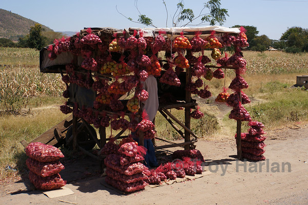 One of many potato stands on the way to Amboseli