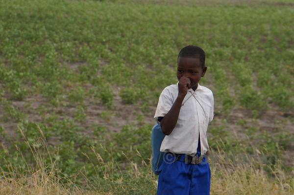 Near Ben's (our Tanzania guide) village