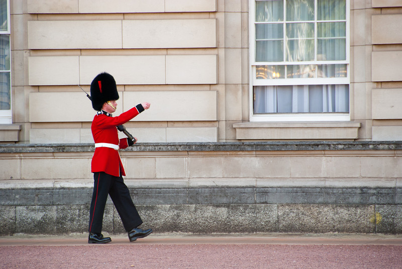 "<span id=""title"">Well Protected</span> <em>London</em> One of the two pacing guards, keeping the queen safe at Buckingham Palace."