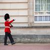 """<span id=""""title"""">Well Protected</span> <em>London</em> One of the two pacing guards, keeping the queen safe at Buckingham Palace."""