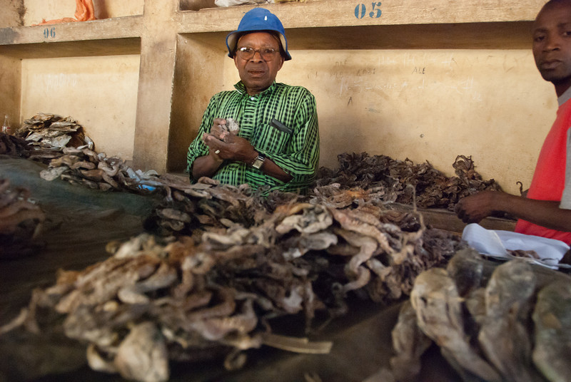 "<span id=""title"">More Dried Seafood</span> More dried seafood in the Banguia market."
